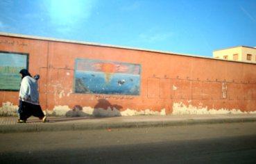 Περπατώντας : η Dakhla , Μαρόκο, 28 Φεβρουαρίου 2009, του Stéphanie Plasse