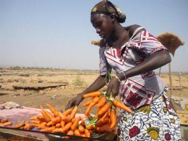 Η πωλήτρια των καρότων, Bamako