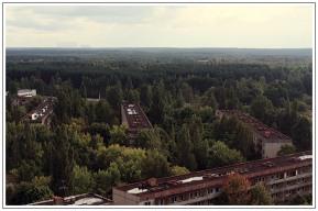 Το δάσος 'ανακατέλαβε' την πόλη