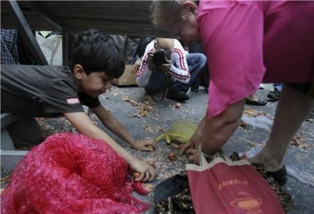 Αγόρι μαζεύει κρεμμύδια που μοίρασαν δωρεάν οι αγρότες κατά τη διάρκεια διαδήλωσης στην Αθήνα, 15 Μαΐου 2013 - A boy collects onions distributed free by farmers during a protest in Athens, May 15 2013 - Un garçon récupère des oignons distribués gratuitement par des agriculteurs, au cours d'une manifestation à Athènes, le 15 mai 2013.  [Enlarge-agrandir-μεγαλώστε]